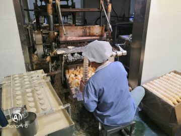 wafer cups making in Indonesia plant